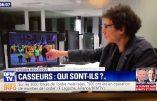 """Sylvain Boulouque, """"expert"""" de BFMTV, qui confond drapeau de Picardie et drapeau royaliste"""