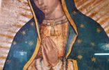 Notre-Dame de Guadalupe – Le contexte des apparitions