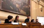 Cyril Hanouna à l'Assemblée nationale, le degré zéro de la politique française