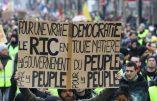 Le RIC, chimère démocratique pour sauver la République ?