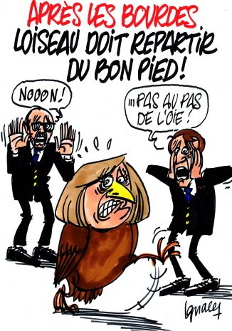 Ignace - Loiseau doit repartir du bon pied !