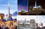 Notre-Dame de Paris : le Sénat s'oppose au gouvernement et à l'Assemblée nationale