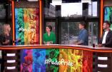 Les pédophiles veulent faire leur promotion durant la semaine LGBT d'Amsterdam