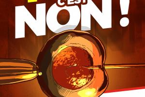 """Lettre ouverte raisonnable aux partisans de la dite """"PMA pour toutes"""""""