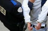 Délinquance en Hérault – Augmentation de 357 % du nombre de victimes de coups et blessures en 20 ans