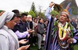 Vers le Synode pour l'Amazonie avec la bénédiction du sorcier