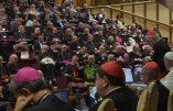 Document final du Synode sur l'Amazonie: pour une Église verte, panthéiste, féministe, avec des prêtres mariés et où le salut éternel est oublié