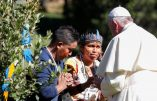 Synode sur l'Amazonie: à propos de l'infanticide chez les peuples indigènes que veulent occulter les pères synodaux