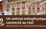 """19 novembre 2019 à Bruxelles – Conférence de Stéphane Mercier : """"Un animal métaphysique connecté au réel"""""""