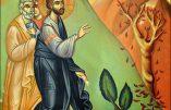 Dimanche 1er décembre 2019 – 1er dimanche de l'Avent ; Saint Eloi, Evêque et Confesseur