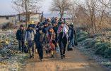 Plus de 80 000 migrants ont traversé la frontière entre Turquie et Grèce
