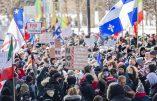 Montréal – Les chiens du pouvoir contre les éveillés qui refusent la dictature sanitaire